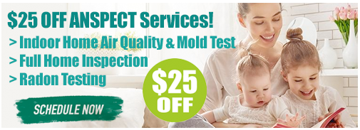 25 dollars off indoor air quality and mold test offer